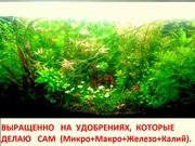 Удобрения( микро,  макро,  калий,  железо) -- для аквариумн растений.