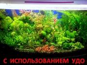 Удобрения(микро,  макро,  калий,  железо) Удо для аквариумных растений